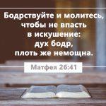 Bible 150x150